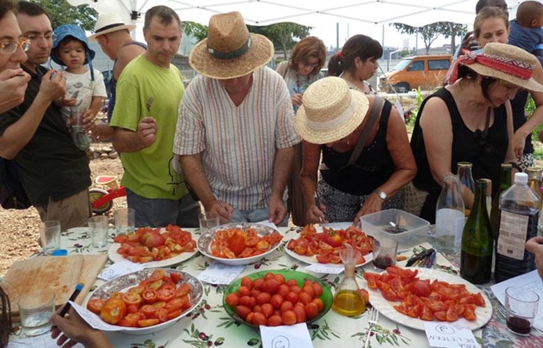 Festa Tast Hort